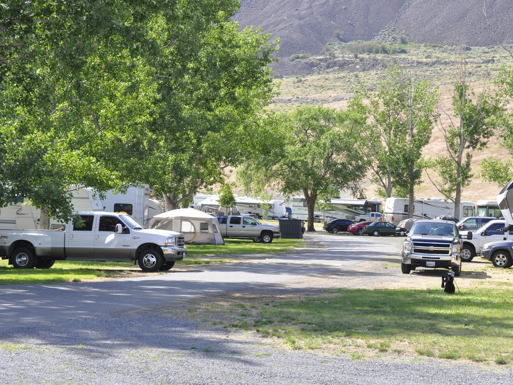 Rv Park With Lots Of Shade